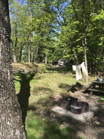 Newtown Battlefield State Park: campsite