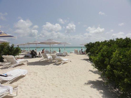 The Ritz-Carlton, Aruba : Obscured Beach Chair View