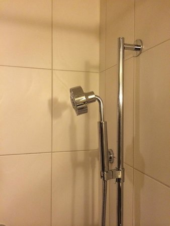 theWit - A DoubleTree by Hilton: Shower head that won't rotate down