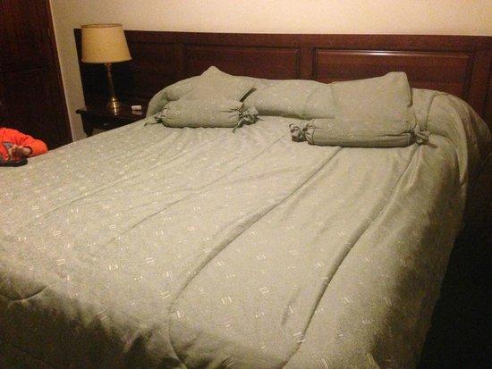Hotel Caupolican: Cama matrimonial