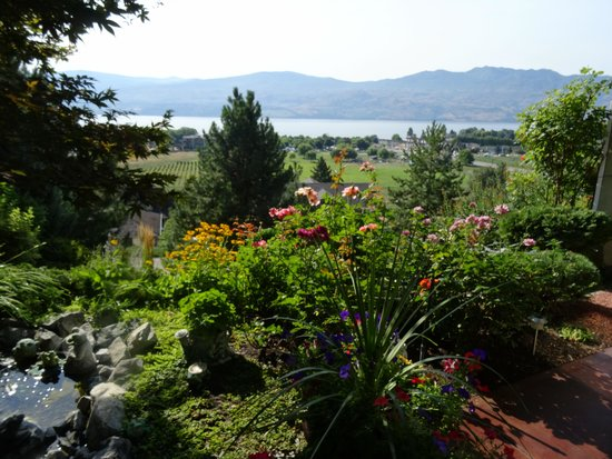 Apple Blossom Bed & Breakfast: View from B&B