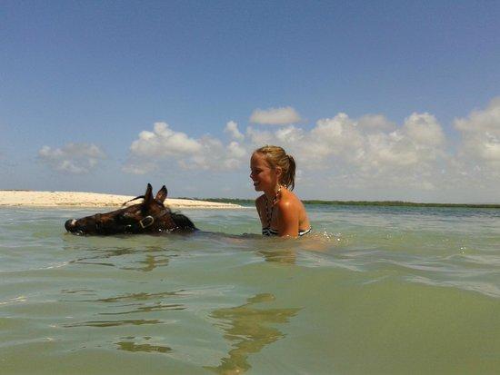 Horse Ranch Bonaire : Special moment.