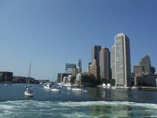 New England Aquarium Whale Watch : ボストンの街