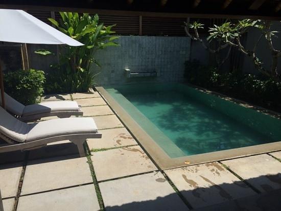 Mayaloka Villas: the pool