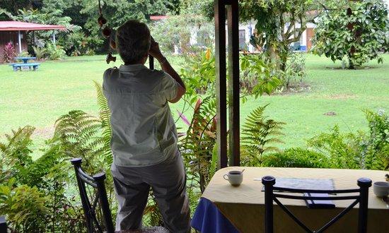 Gavilan Sarapiqui River Lodge: View from the resaurant