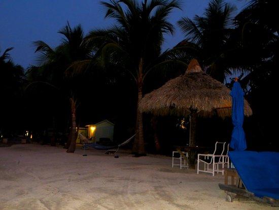 Island Bay Resort : View at night