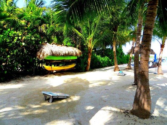 Island Bay Resort: kayaks!