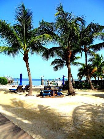 Island Bay Resort: hotel grounds