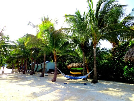 Island Bay Resort: Hammocks, kayaks, and cornhole...what more could you ask for