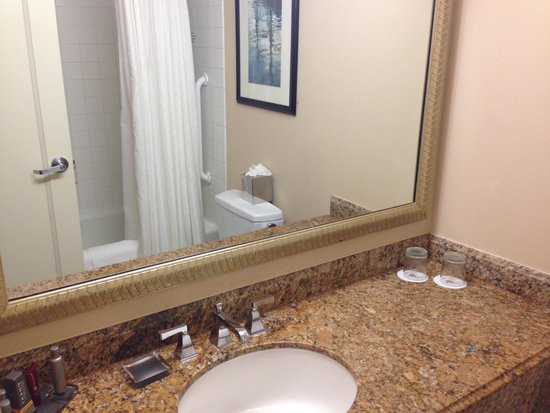 Anaheim Marriott: Bathroom area