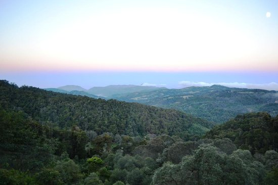Paraiso Quetzal Lodge: The view from our cabin