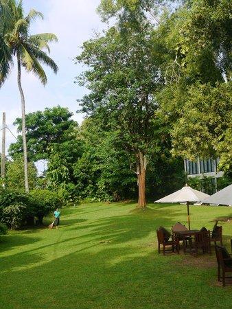 Heritage Weligama: Garden