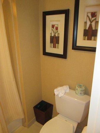 Doubletree Suites by Hilton Hotel Anaheim Resort - Convention  Center : baño