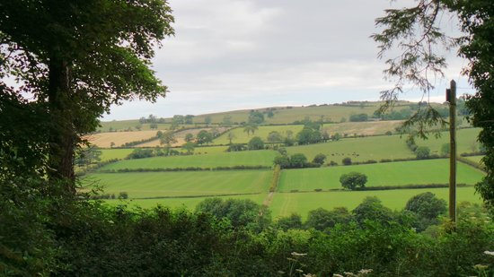 Woodlands Country House: View across the fields from garden