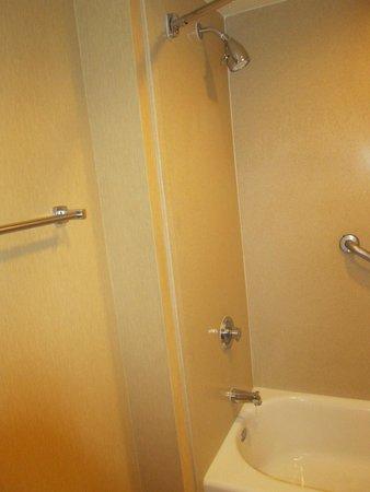 Doubletree Suites by Hilton Hotel Anaheim Resort - Convention  Center: baño