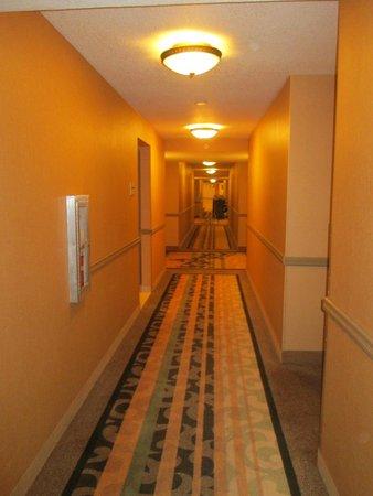 Doubletree Suites by Hilton Hotel Anaheim Resort - Convention  Center: pasillo