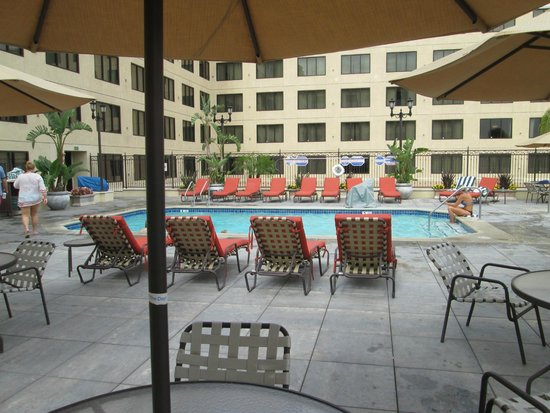 Doubletree Suites by Hilton Hotel Anaheim Resort - Convention  Center: pileta