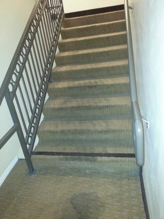 Holiday Inn Express Hotel & Suites Woodland Hills: Staircase