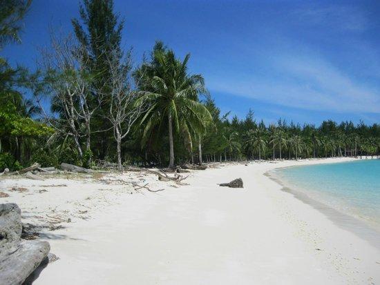 Touch Borneo