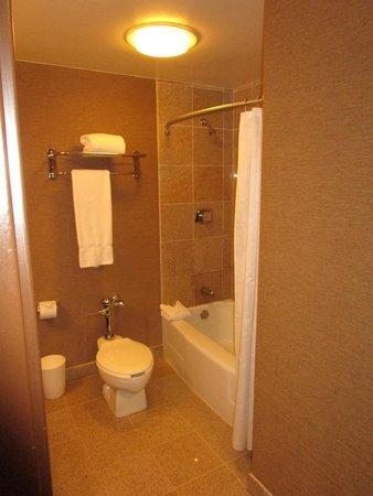 Sheraton Dallas Hotel: Bath