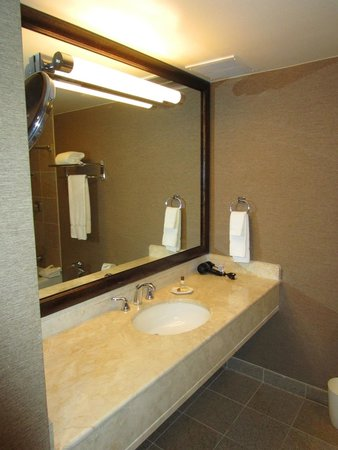 Sheraton Dallas Hotel: Bathroom Counter