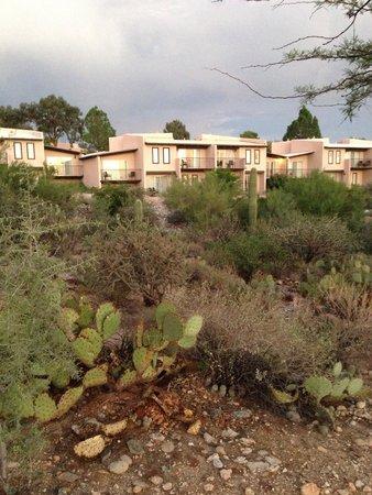 Westward Look Wyndham Grand Resort and Spa : Desert view rooms