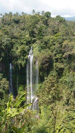 Sekumpul Waterfalls : Gorgeous falls!