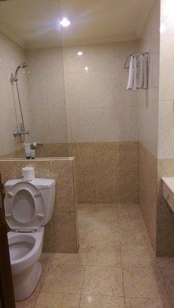 Arion Swiss-Belhotel Kemang Jakarta: Bathroom with the shower