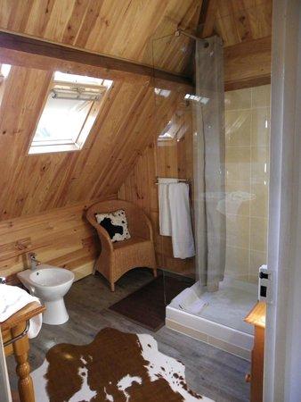 Hotel Saint-Louis: Salle de bains d'une chambre
