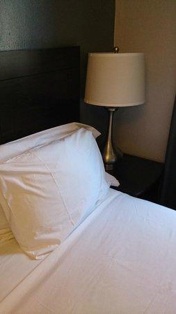 Hotel 309: vistas