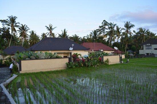 Deta Junjungan Rice Field Villa: الفيلا من الخارج
