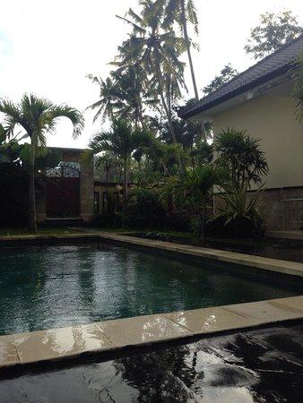 Deta Junjungan Rice Field Villa: المسبح