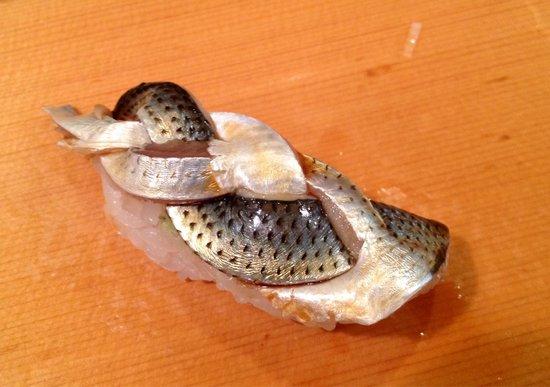 Sushidai: Mackerel