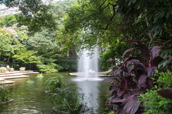 Kowloon Park: Nice water feature