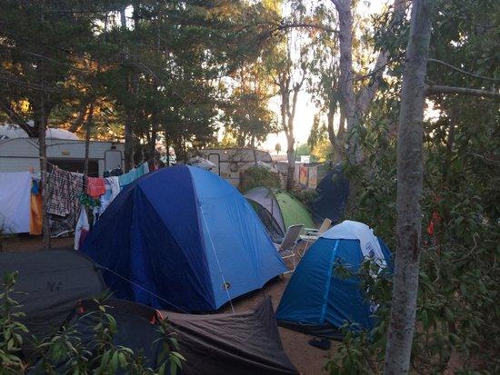 Villaggio Egad: Camping