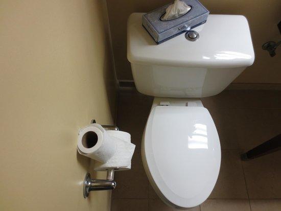Aquarius Casino Resort, BW Premier Collection: no room to grab toilet paper