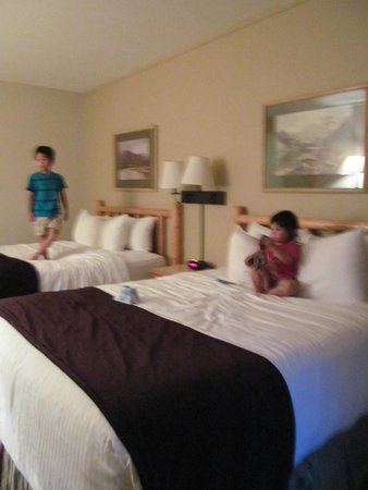BEST WESTERN Sheridan Center: Clean and Comfortable Beds