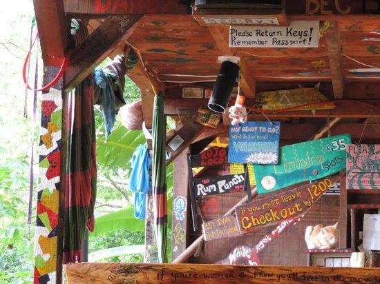 The Treehouse : Bar