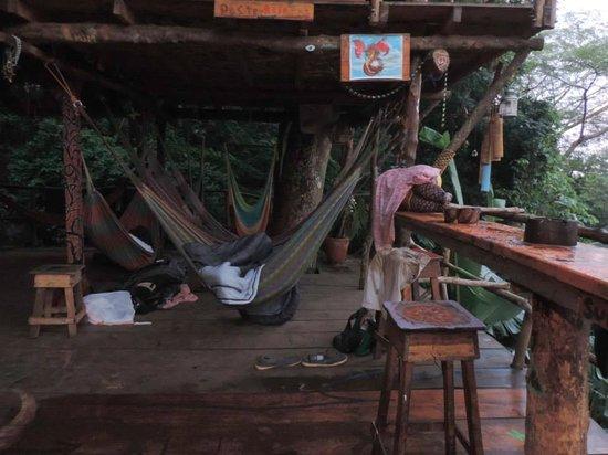 The Treehouse : Hamacs