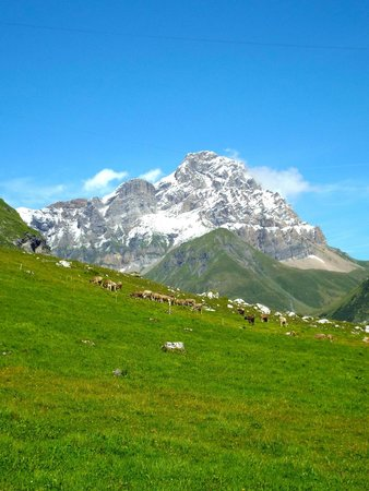 ECHO Trails: The Heart of the Alps Tour
