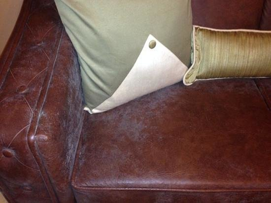 Citrus Chambers Mahabaleshwar: Fungus covered sofa