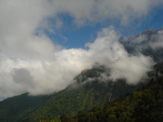 Kinabalu Park : La nebbia agl'irti colli...