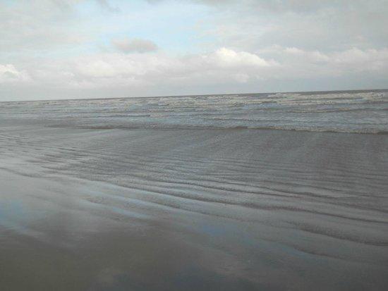 Park Hyatt Goa Resort and Spa : The beach in the morning