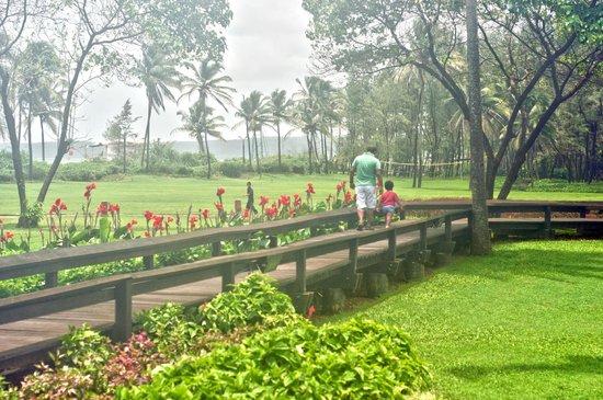 Park Hyatt Goa Resort and Spa : The way to the beach