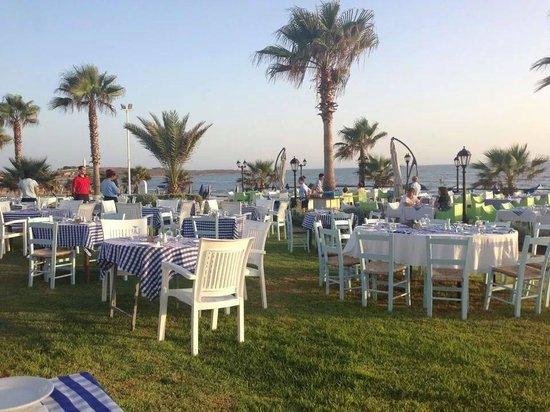 Kefalos Beach Tourist Village: BBQ night