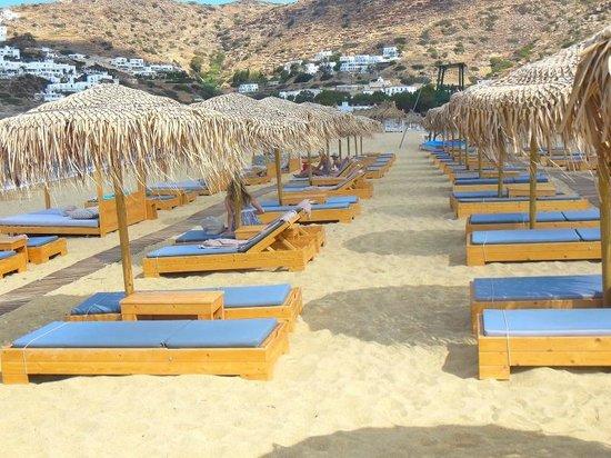 Dionysos Seaside Resort : i lettini del dionysos