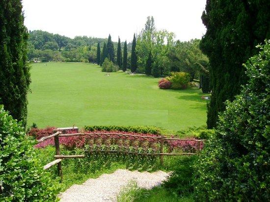 Parco Giardino Sigurta : Vista