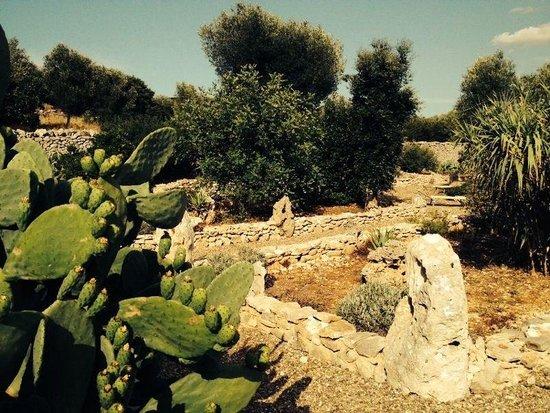Il giardino di pietra picture of masseria quis ut deus crispiano
