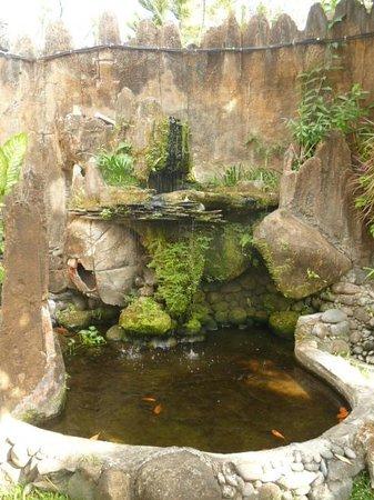 Puri Sading Hotel: Waterfall/Pond