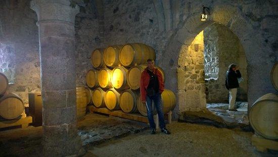 Chateau de Chillon : les caves